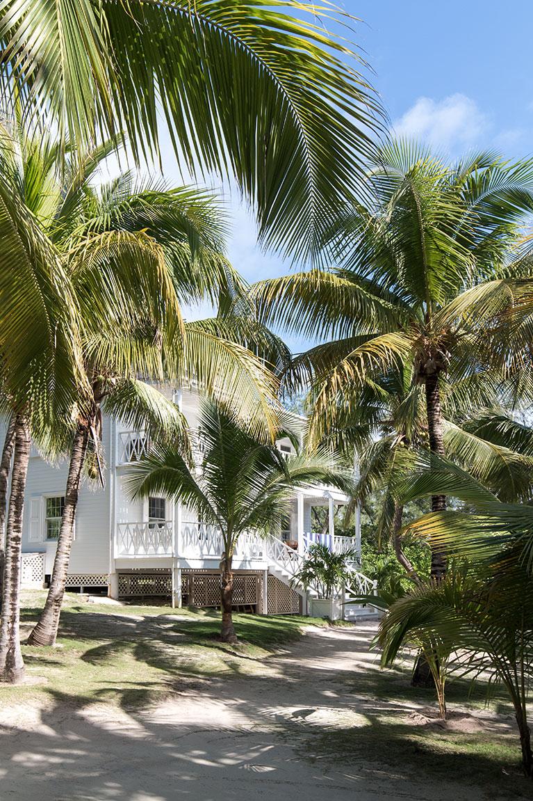 bahamas-103