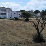 case-trulli-alberobello-bari-italia-13