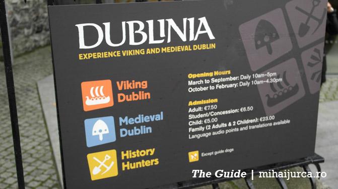 dublinia-1