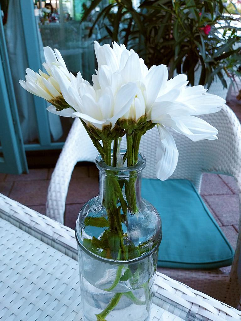 floare-rece