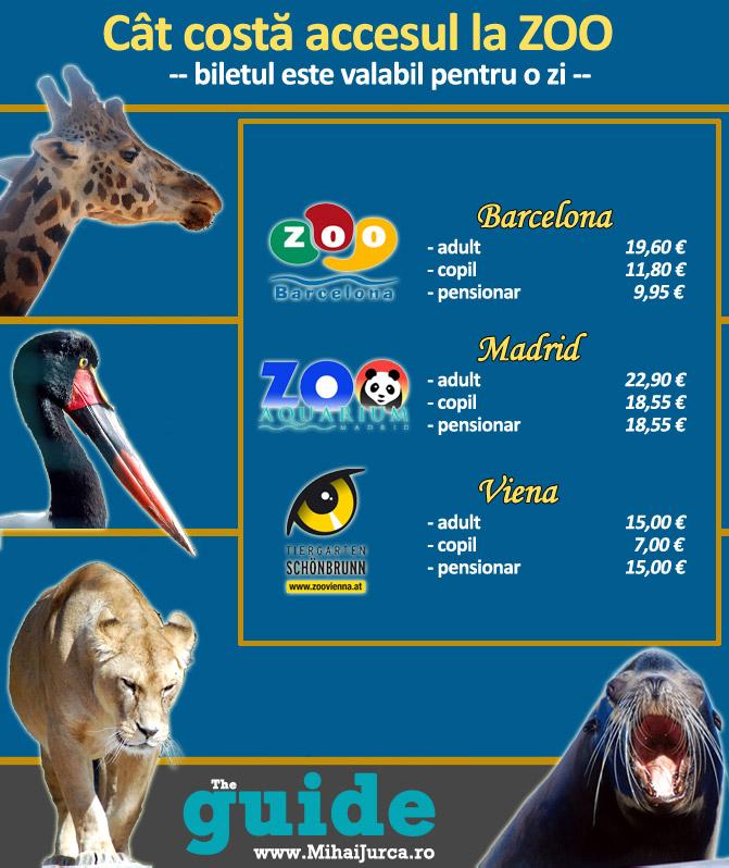 grafic-zoo