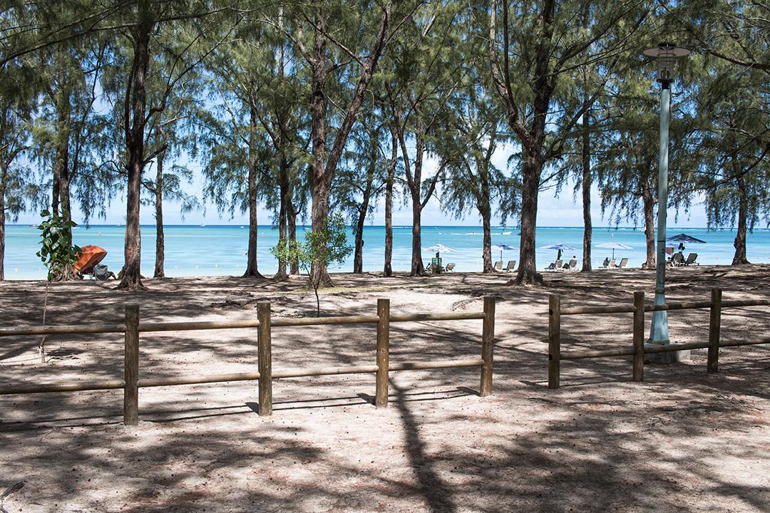 plaja-mauritius-1